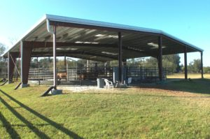Riding Arenas and Barns_D